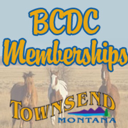 Become a BCDC Member